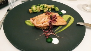 Dullstroom Trout